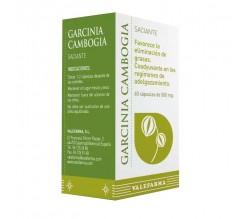 GARCINIA CAMBOGIA SACIANTE 60 CÁPSULAS